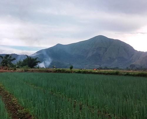 Panorama walk on the foot of Mt. Rinjani Sembalun Village.  #heylombok #sembalunvillage #lombokisland #tours #traveling #natures #amazing