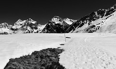 (Anjuli Lohmüller) Tags: white black bw landscape nature alps arosa switzerland schweiz hochalpen wanderweg hiking mountains snow outdoor
