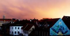 View out my kitchen window (Jaedde & Sis) Tags: window view roof dusk mural turtle orton challengefactorywinner thechallengefactory beginnerdigitalphotographychallengewinner bdpc