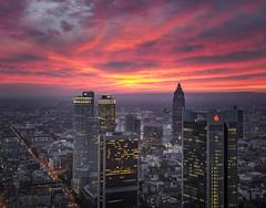 Frankfurt am Main blue hour (Rene Stannarius) Tags: frankfurt am main skyline thebluehour citylights blaue stunde aussichtsplattform maintower panorama sonnenuntergang