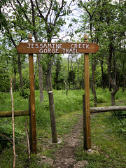 1111 (cleotalk) Tags: jessamine county ky kentucky gorge trail creek overstreet deer woods hiking
