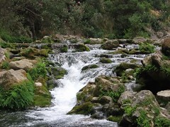 Akchour region de chaoun (faicaljalal) Tags: marocco morocco maroc chaoun chefchaoun akchour nature riviére river enpleinair allaperto