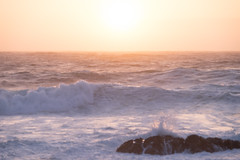DSCF2248.jpg (Darren and Brad) Tags: pacificgrove asilomarstatebeach california montereycounty sunset asilomar asilomarconferencegrounds