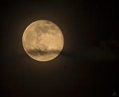 Near miss on moustache face (Jersey JJ) Tags: nearmissonmoustacheface j2 full moon flyby aircraft wispy clouds near miss buzzed