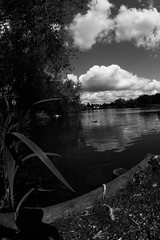 goldsworth park lake (scubachef83) Tags: goldsworth park blackwhite tokina 1017mm canon eos