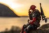 Deadpool (MadMartigen) Tags: littlestonypoint deadpool revoltech actionfigure toy marvel marvelcomics hudsonvalley