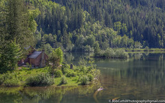 Cottage By The Lake (westrock-bob) Tags: spring bc cottage peaceful water cabin evergreentrees lake britishcolumbia trees copyright retreat home secluded getaway quiet 6d canada eos reflection green canon