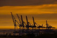 Harbour (Rudi Pauwels) Tags: goteborg gothenburg sverige sweden schweden harbour hamnen sunset orange cranes containerharbour tele zoom spring2017 tamron 18270mm tamron18270mm nikon d7100 nikond7100 skandiahamnen