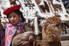 Alpaca Girl (kate willmer) Tags: clothes costume alpaca baby poncho girl child market peru alitplano