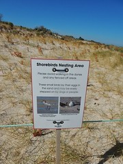 Request to Protect Shore Birds (mikecogh) Tags: semaphore sign dunes request protection