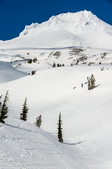 NT3.0078-PDX1700416_60540 (LDELD) Tags: oregon spring mounthood snow timberlinelodge