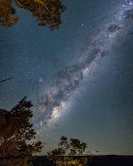 Nothing else... (nightscapades) Tags: airglow astronomy astrophotography autopanopro bundanoon eucalyptus galacticcore milkyway mortonnationalpark night nightscapes pano panorama panos saturn sky southernhighlands stars stitch trees newsouthwales australia au