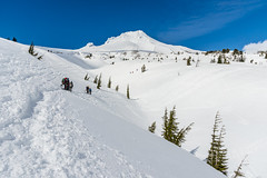 NT3.0078-PDX1700416_60535 (LDELD) Tags: oregon spring mounthood snow timberlinelodge mountain alpine hikers