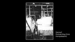 hempstead-pinhole-silver-print-sienna