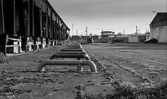 villeneuve St Georges, triage, B&W, 1 (Patrick.Raymond (3M views)) Tags: banlieue 94 industrie entrepot argentique tmax nikon abandonné urbex