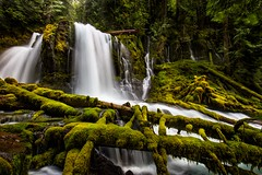 Upper Downing Creek Falls (Mstraite) Tags: waterfall rain snow water stream creek river forest green trees path hike lost trail tripod canon oregon cascades mountain blend ngc