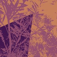 FLURRY 5 (Zala02Creations) Tags: print prints artwork floralprint digitalart graphics graphicdesigner designer designing digitalpainting painting art artist graphicartist digital digitalartist forsale wallpaper background wall printed printdesign printeddesign designs pattern floralpattern floralart floralcollage flowerart digitalcollage collage digitalmanipulation artprints artprint