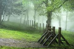 Paso para montañeros (Jabi Artaraz) Tags: jabiartaraz jartaraz zb euskoflickr montañeros niebla primavera udaberria paso
