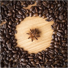 A Circle and a Star (explored) (AngelCrutch) Tags: circle star staranise shapes coffeebeans stilllife brown lookingdown viewpoint