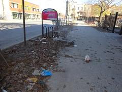 DSC06107 (olivier_martineau) Tags: montréal montreal plateau montroyal rue sthubert 375e poubelle saleté malpropre trottoir 375