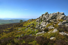 The Stiperstones, Shropshire Hills (Baz Richardson (now away until 27 May)) Tags: shropshire thestiperstones shropshirehills areaofoutstandingnaturalbeauty hills landscapes tors