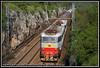 E655 084 + E655 537 (Andrea Miglia) Tags: e655 caimano merci euc trenitalia mercitalia ferrovie freight trains villa opicina cervignano smistamento