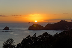 Wschód słońca w rezerwacie Te Whanganui-A-Hei (Cathedral Cove) | Te Whanganui-A-Hei (Cathedral Cove) Marine Reserve