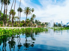 More Echo Park pictures. It's a very peaceful view. (sammanwong) Tags: scenery sonya6300 lakeview echopark losangeles a6300 lake relaxation peaceful sonyalpha park downtown palmtrees downtownlosangeles downtownla reflections zeiss1670 boating