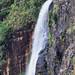 San Ignacio - 1000 Foot Falls Close Up