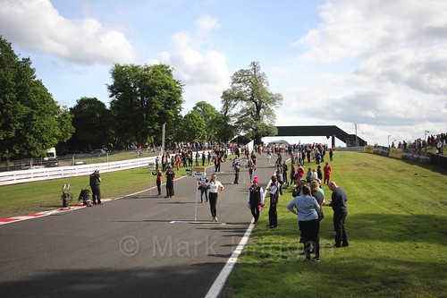 The BTCC grid at Oulton Park, May 2017