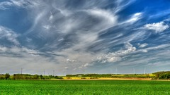 weather (YᗩSᗰIᘉᗴ HᗴᘉS +5 400 000 thx❀) Tags: weather sky blue bluesky impressive clouds campagne green nature colza yellow landscape 7dwf flickrunitedwinner