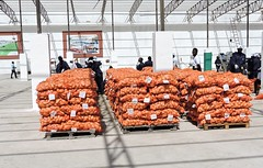 """Potatoes packing 