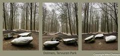 Dolmen - Tervuren Park (MikeChet) Tags: tervuren vlaanderen belgium places tervurenpark