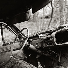 Car Graveyard - Panatomic-X (magnus.joensson) Tags: sweden swedish småland forest car graveyard hasselblad 500cm zeiss planar 80mm cf kodak panatomicx exp 1989 redfilter develop rodinal 150 splittoned