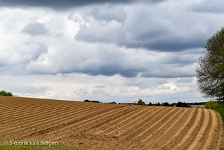 Nicely Ploughed Field