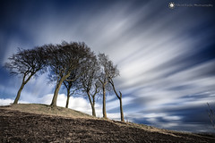Seven Sisters round barrow, Copt Hill (Silent Eagle  Photography) Tags: sep silent eagle photography silenteaglephotography canon canoneos5dmarkiii copthill sevensisters trees plants longexposure lee leefilters bigstopper sky clouds weather blue white outdoor sevensistersroundbarrow northeast england