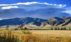 Burkes Pass, South Canterbury (Lim SK) Tags: burkes pass canterbury south new zealand mackenzie country