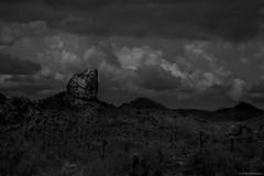 random rock (AZ Bear Photography) Tags: mono saguaro cactus clouds rock mountain landscape arizona park dirt arid desert sky bnw travel tour photography beautiful fun