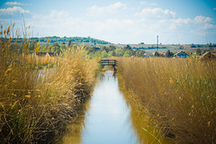 Kanal beim Neusiedler See