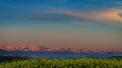Sunset glow in the Swiss Alpes (sandrobrunner) Tags: sunset sunsetglow afterglow swissalpes mountains swissmountains schweiz switzerland swiss suisse svizzera redsky mountainview springandwinter glowingmountains