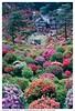 F90_FUJI400_ (8) (yoshiyuki ftyfty123) Tags: nikonf90 fujicolorsuperiaxtra400 フィルム フィルムカメラ film filmcamera nikon f90 一眼レフ