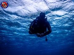 "Kalymnos Diving - www.scubakalymnos.com • <a style=""font-size:0.8em;"" href=""http://www.flickr.com/photos/150652762@N02/34641476236/"" target=""_blank"">View on Flickr</a>"