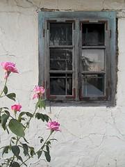 Lost But Not Forgotten... (AleksandraMicic) Tags: