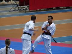 2017-05-21 - Championnat d'Europe de Kyokushin à Lyon (mrugalfa) Tags: kyokushin lyon championnat europe karaté compétition rhône france sport personnes