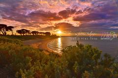 Werribee Beach DSC-0395 (fatima_suljagic) Tags: landscape fineartprints fatimasuljagicmelbourne photoprints canvasprints australia nature naturephotographer photographer photographermelbourne artstudiomaja
