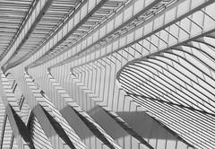 <<<< (lost in lines) (Blende1.8) Tags: santiagocalatrava liègeguillemins liège station bahnhof trainstation architecture architektur modern contemporary lines shadows schatten contrast kontrast abstrakt abstract sony alpha ilce7m2 a7m2 a7ii fe sel 85mm 18 urban city mono monochrome monochrom black white schwarz weiss weis oof dach construction konstruktion
