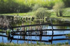 Evening Reflections (L E Dye) Tags: fencefriday alberta canada d5100 evening ledye nikon spring fence prairie rural