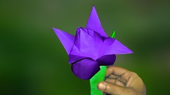 How to Make Amazing Origami Lotus 🌷 Simple and Easy to Make Lotus Flower (蓮花) (Jr Origami) Tags: how make amazing origami lotus 🌷 simple easy flower 蓮花