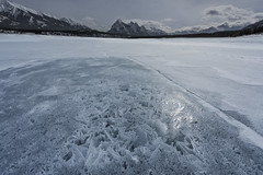 Fractal Structures (andre adams) Tags: frozen mountains cold nature travel frozenlake canada alberta snow ice structures canadianrockies fractals