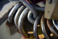 Sealed Promise Locks (pgpphotographer) Tags: locks frankfurt germany love promise macro closeup digital nikon d5100